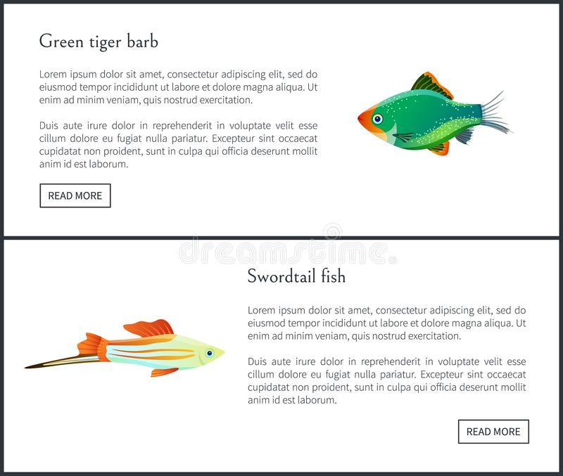 Green Tiger Barb, Swordtail Fish Isolated on White. Freshwater aquarium fish silhouette icon on blank background in cartoon style vector illustration royalty free illustration