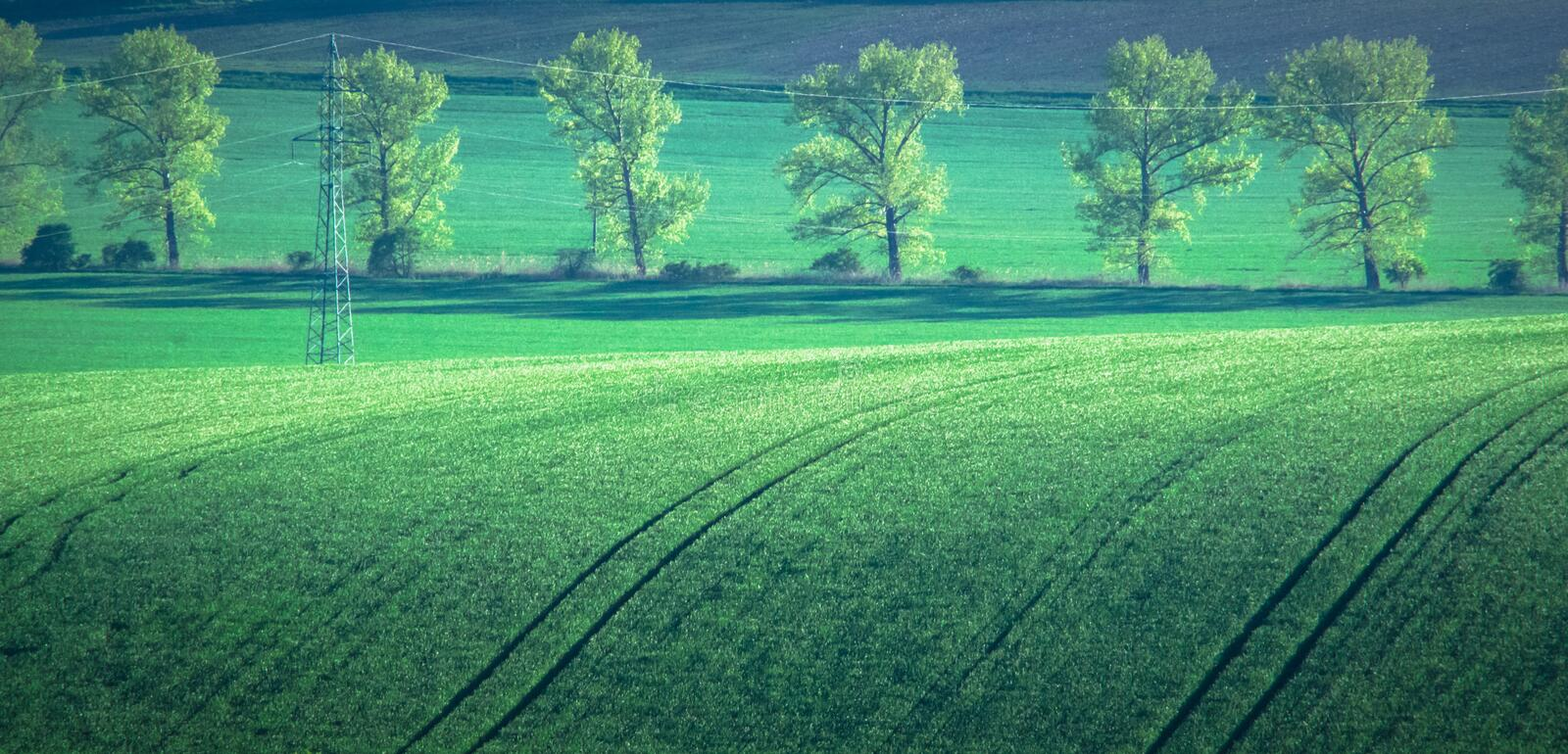 Green and tirquoise spring field abstract background stock image