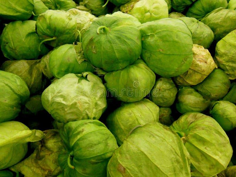 Tomatillos stock photos