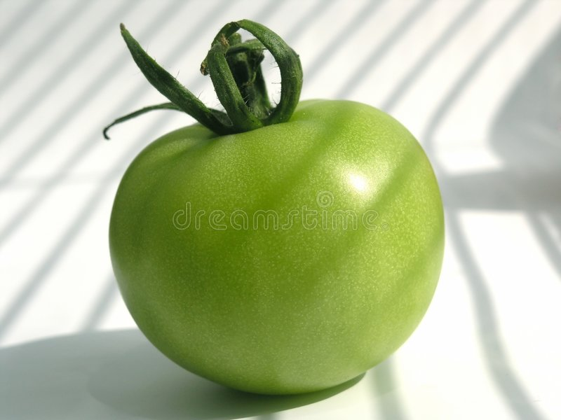 Download Green tomato stock image. Image of diet, cherry, food, fruit - 186439