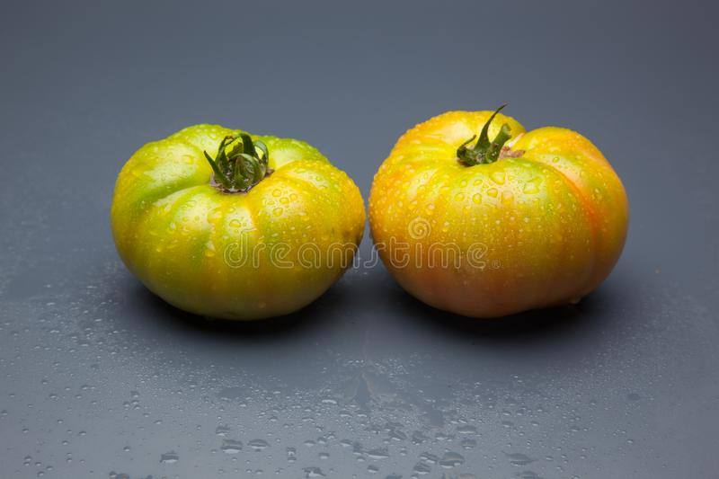 Green tomato on plain background, healthy food. Green tomato, waiting to be matured artificially, on a plain background, healthy food, tomato that is still to royalty free stock photography