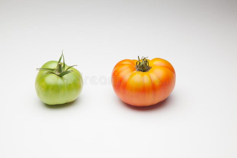 Green tomatoes on plain background. Organic tomatoes, grown without chemicals or pesticides, green tomatoes on a plain background. There are people who like to stock photos