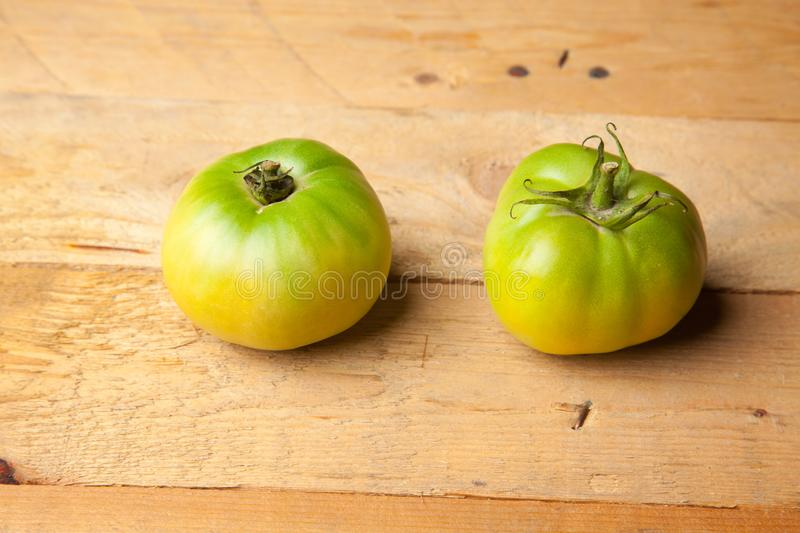 Green tomatoes on plain background. Organic tomatoes, grown without chemicals or pesticides, green tomatoes on a plain background. There are people who like to royalty free stock image