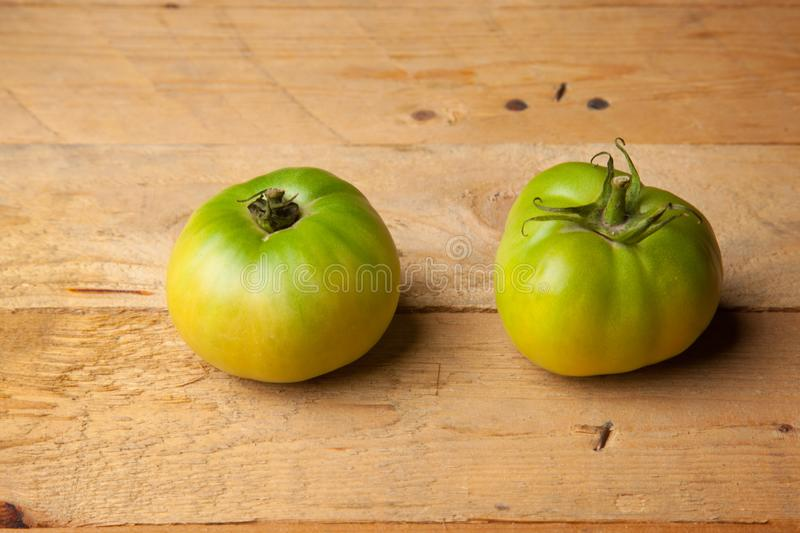 Green tomatoes on plain background. Organic tomatoes, grown without chemicals or pesticides, green tomatoes on a plain background. There are people who like to royalty free stock photos