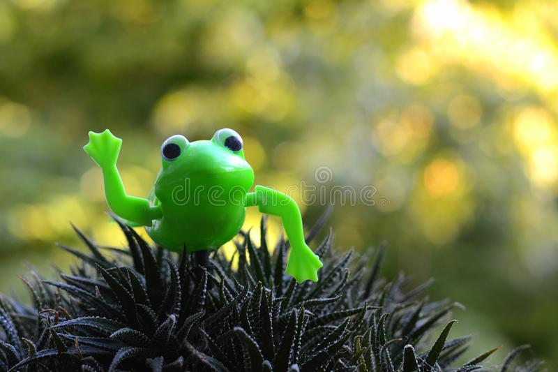 Green toy frog gardening decor. Gree toy frog decor on a green plant background royalty free stock images