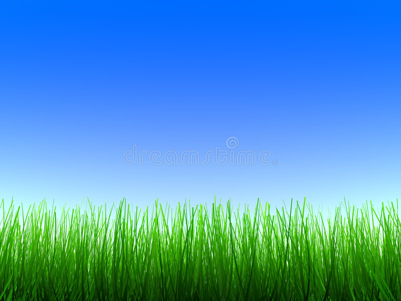 green trawy ilustracji