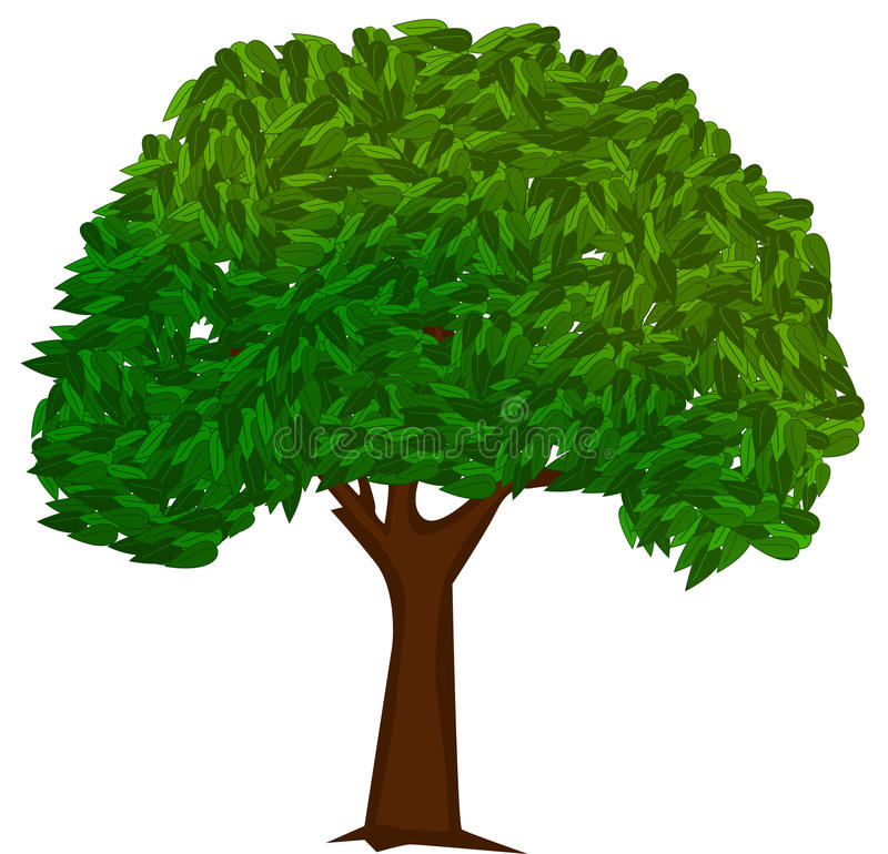 Green tree royalty free illustration