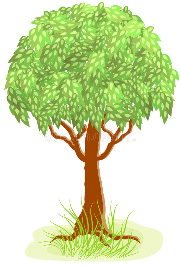 Download Green tree stock vector. Illustration of plats, living - 16702316