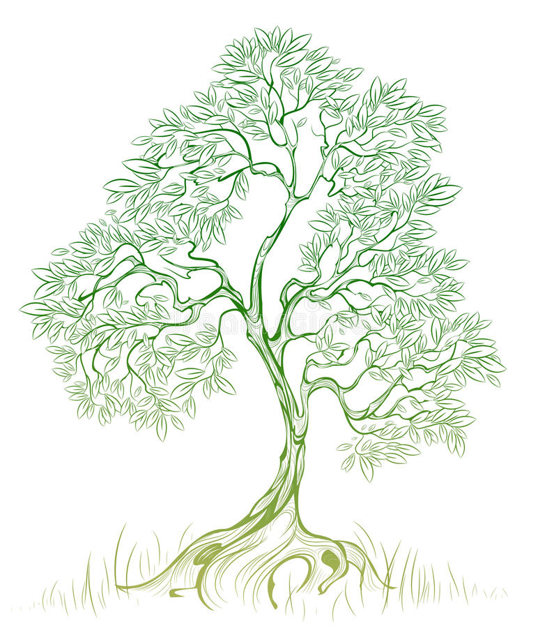 Free Green Tree Stock Photography - 17362202