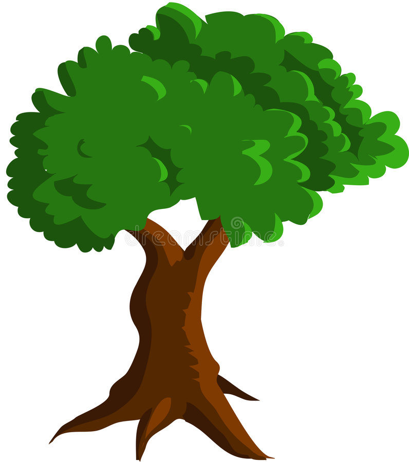 Download Green tree stock vector. Illustration of beautiful, arbor - 8070059