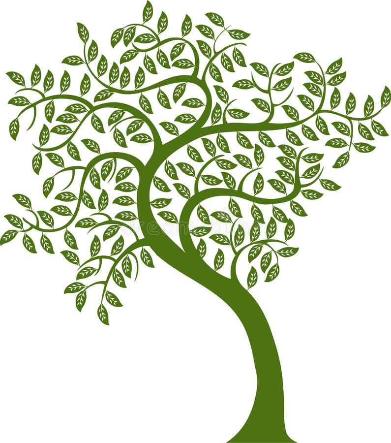 Green Tree royalty free illustration