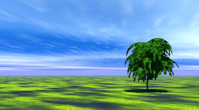 Green tree in a field. Green tree in a filed by beautiful day royalty free illustration