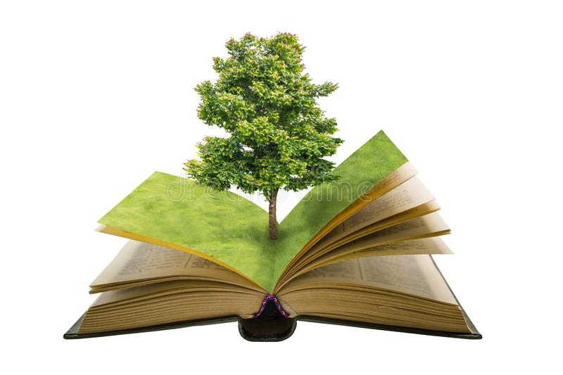 Green tree and field grass on open vintage book isolated stock images
