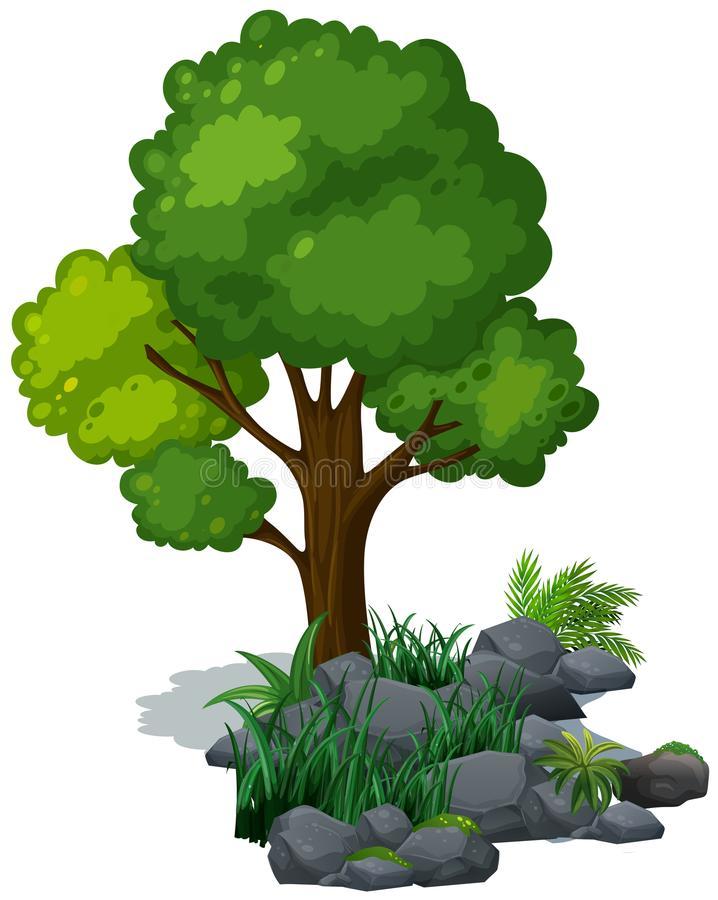 Green tree and grass on the rocks royalty free illustration