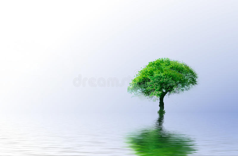 Green Tree - Green ecology concept for your design stock image