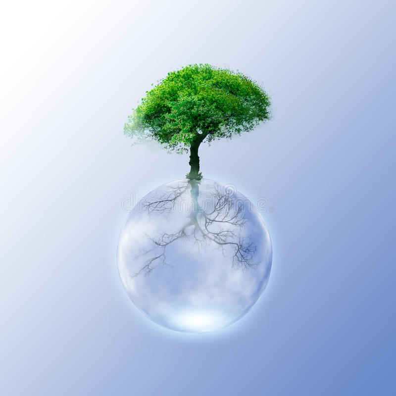 Green Tree - Green ecology concept for your design stock images