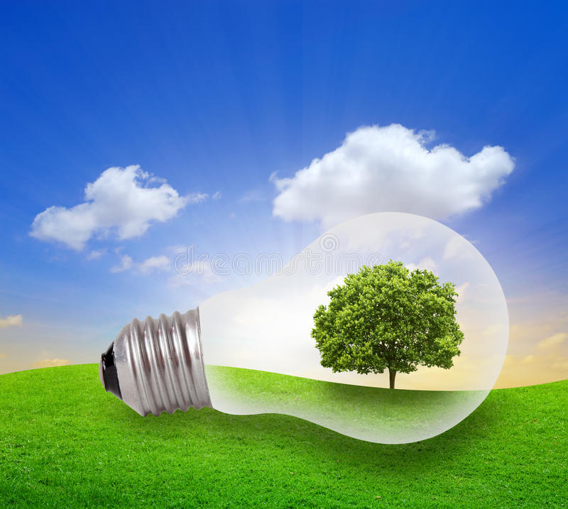 Green tree growing in a bulb with blue sky vector illustration