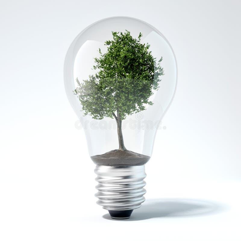 Free Green Tree Inside Light Bulb. 3d Rendering Stock Photography - 88453452