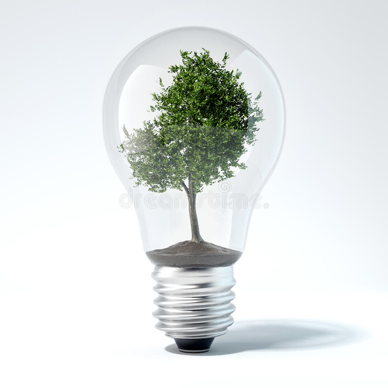 Green tree inside light bulb. 3d rendering. Green tree inside light bulb in bright studio. 3d rendering stock photography