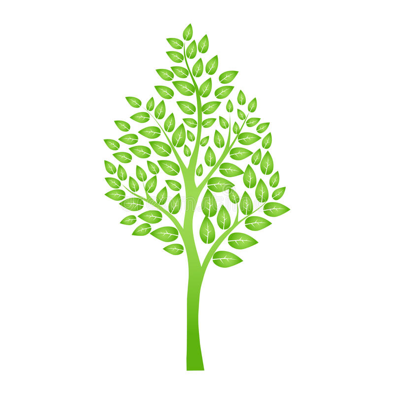 Green tree isolated on white for your design stock illustration