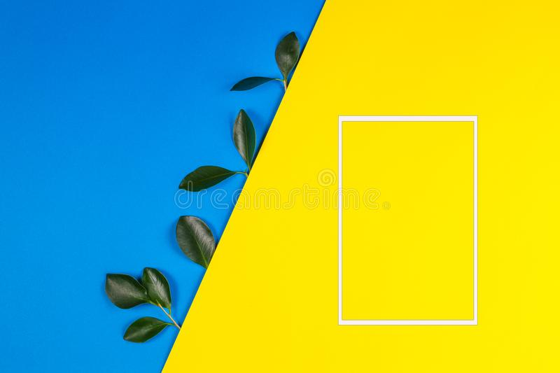Green tree leaves and white empty frame for text or image on yellow and blue background stock photos