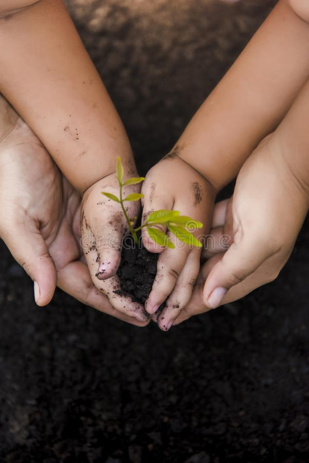 Green Tree Planting World Green. Trees with money, saving money and growing hands. royalty free stock photography