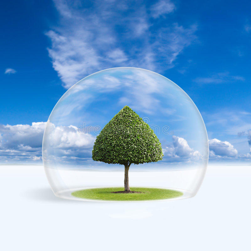 Download Green Tree Is Under The Protection Stock Image - Image of cupola, world: 7836087