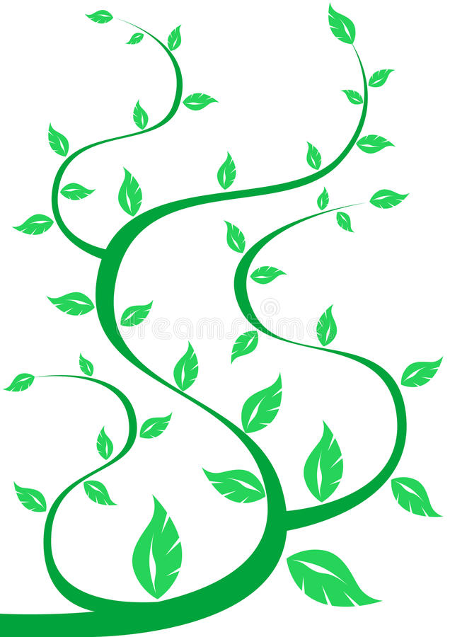 Download Green tree on white stock vector. Image of illustration - 12428483