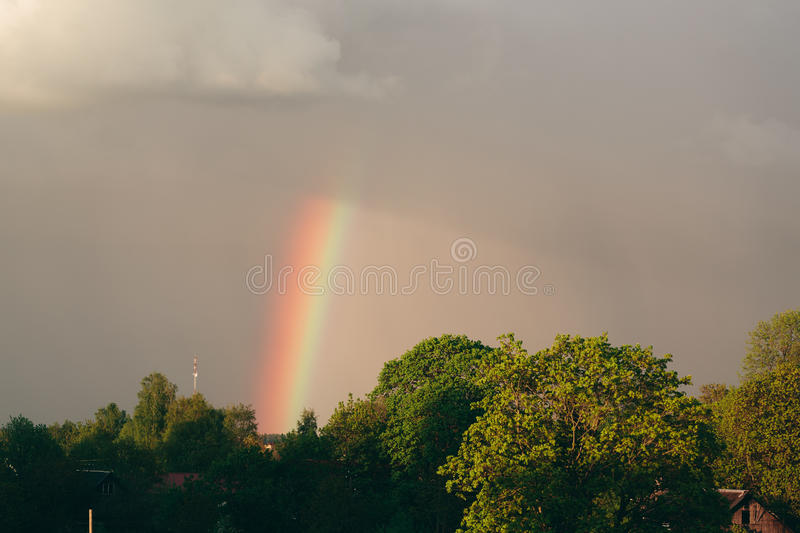 Green trees against a rainbow and gray clouds. stock photo
