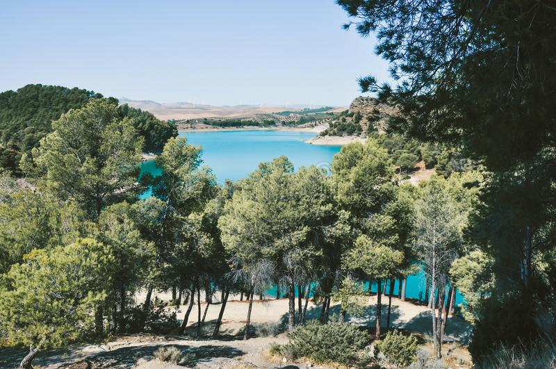 Green Trees With Blue Water Under the Blu Sky royalty free stock photography