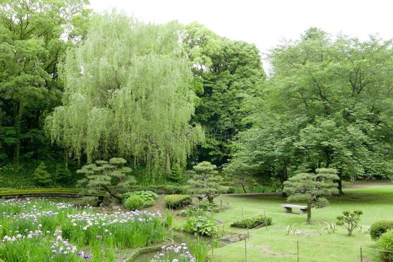 Green trees, bridge, flowers in Japanese park royalty free stock image