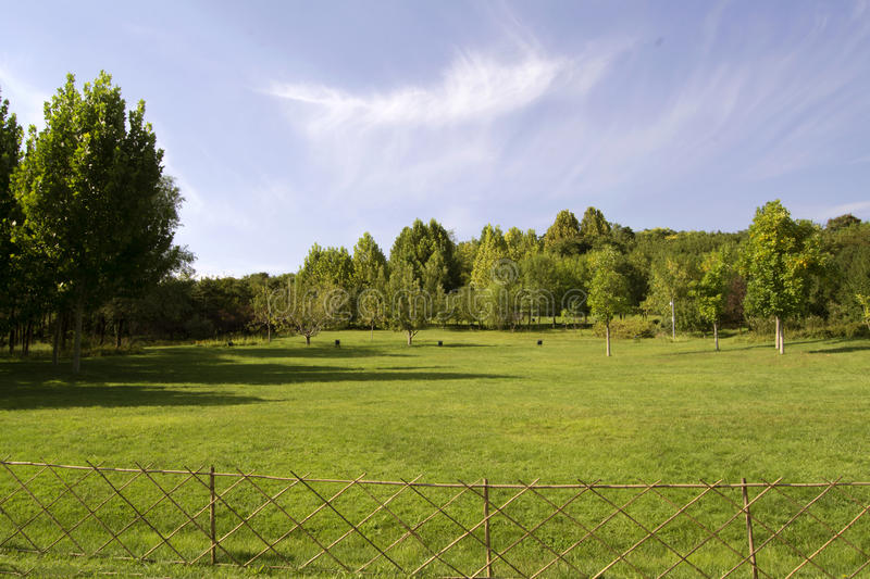 Green trees and grass in autum. Green trees and grass ,fence stock photography