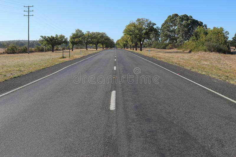 Green trees line an Avenue of Honour in rural Australia. Green trees line the edges of an Avenue of Honour in rural Australia stock photos