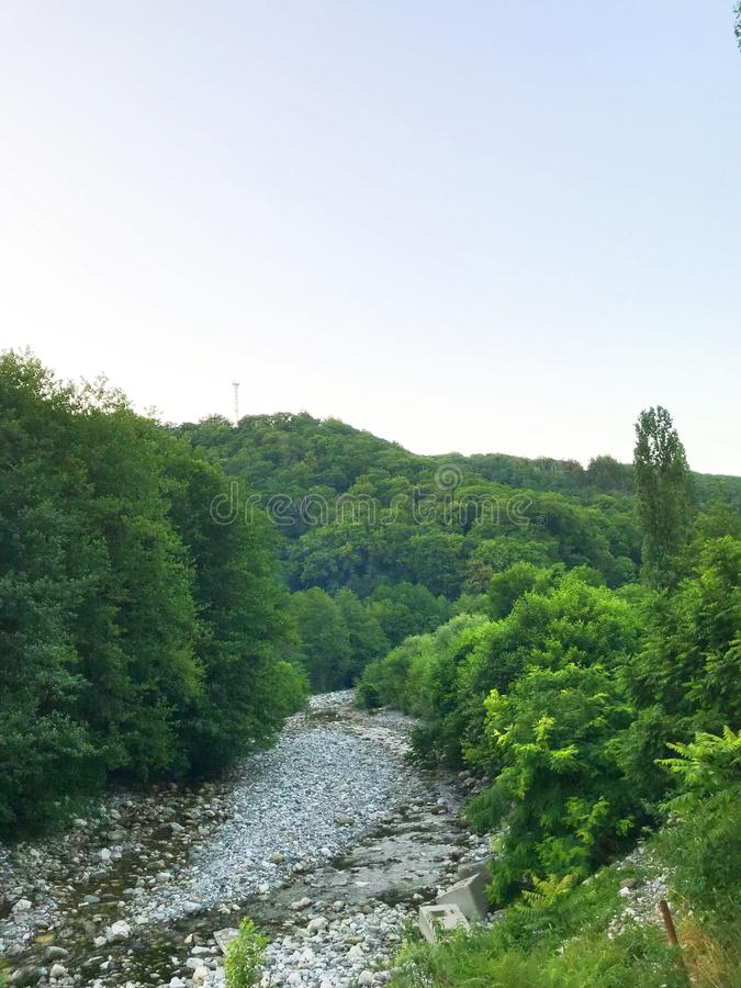 Green trees and a mountain river. Green trees and a mountain river with stones under a blue sky on a summer day stock photography