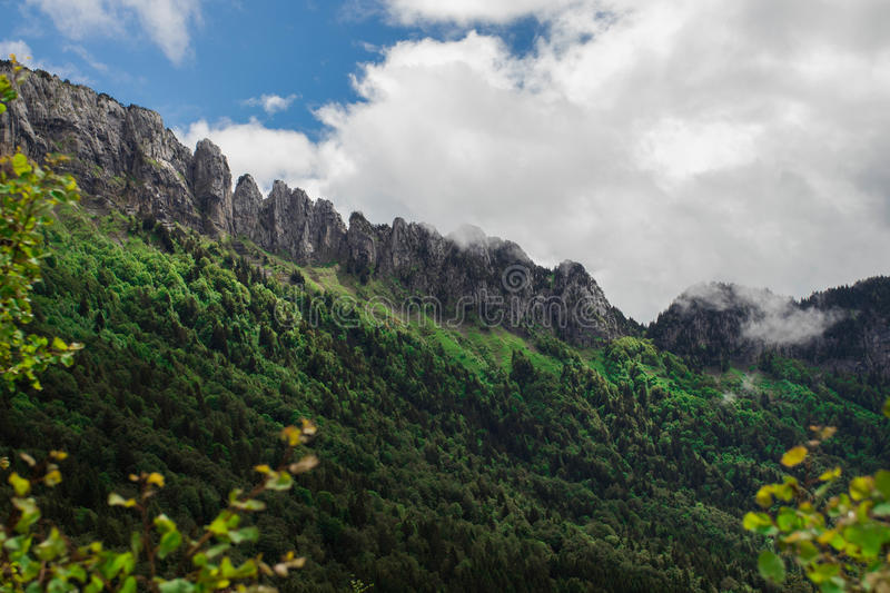 Green Trees and Mountains Under White and Blue Clouds stock photo