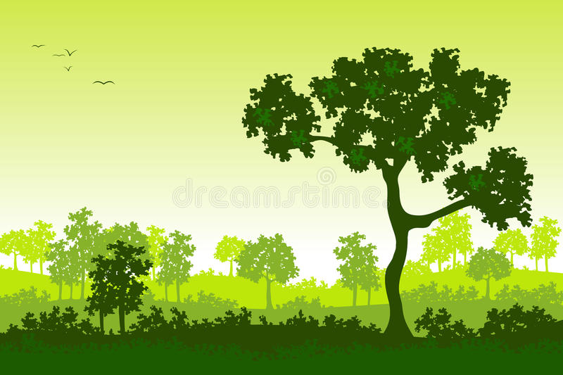 Green trees in the sunset. On hills in summer vector illustration