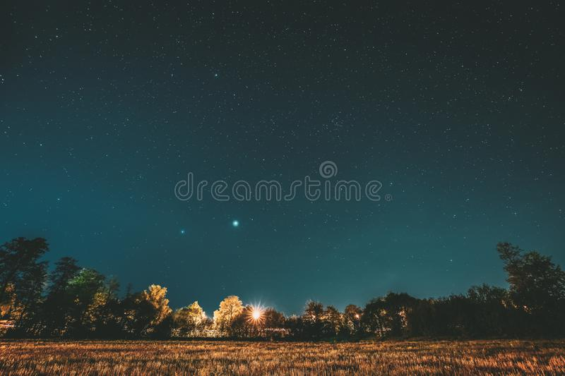 Green Trees Woods In Park Under Night Starry Sky. Night Landscape With Natural Real Glowing Stars Over Forest, Meadow At royalty free stock photo