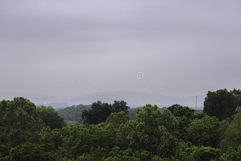 Green Treetops under Overcast Sky royalty free stock photography