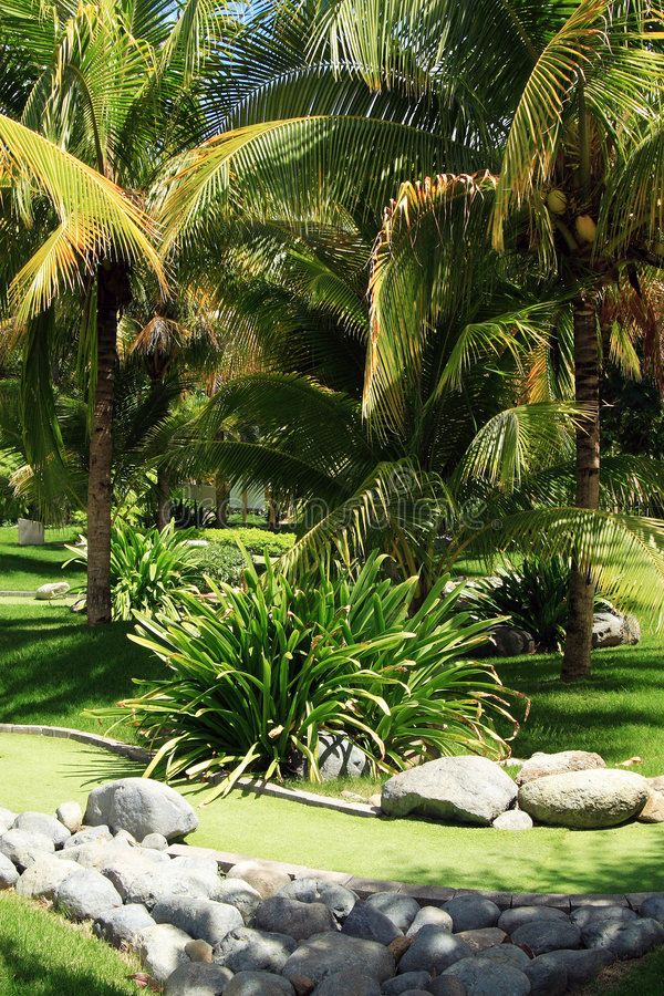 Green tropical garden with pat. H in Puerto Rico island royalty free stock image