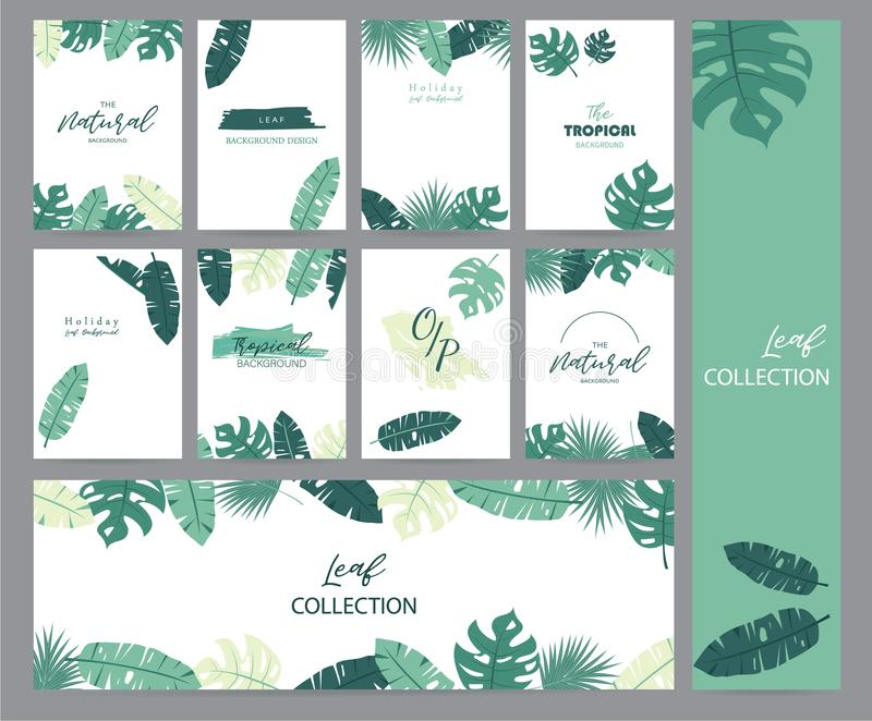 Green tropical greeting card with palm, coconut tree and banana vector illustration