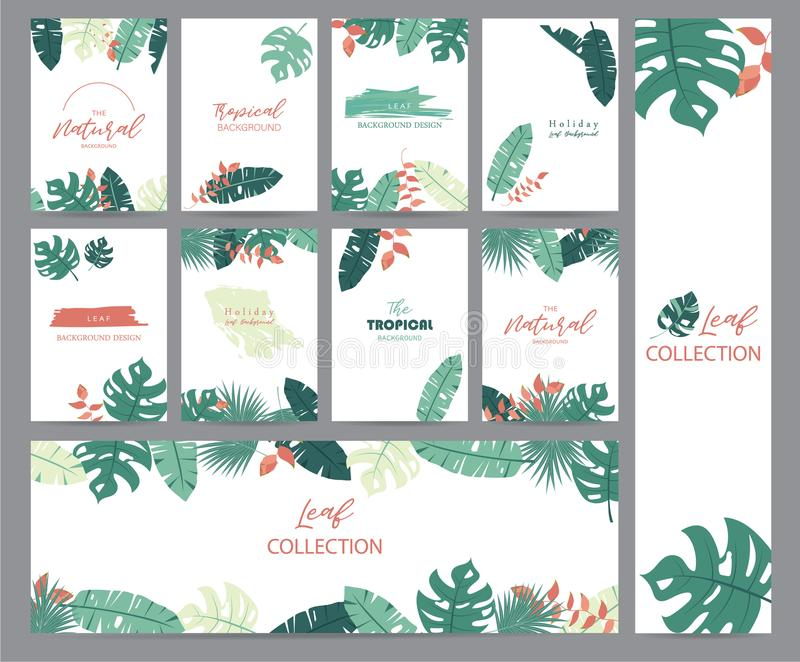 Green tropical greeting card with palm, coconut tree,heliconia a vector illustration