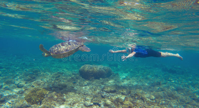 Green turtle with swimming woman in modern snorkeling equipment. stock image