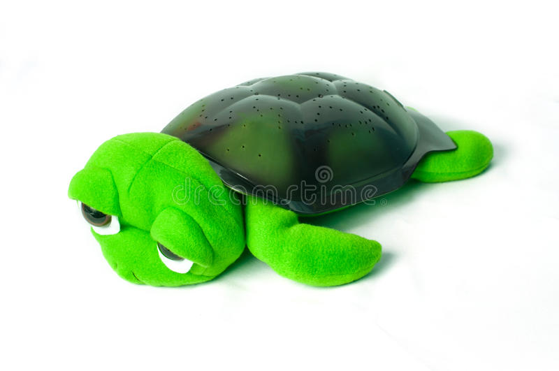 Green turtle toy. On a white background stock photos
