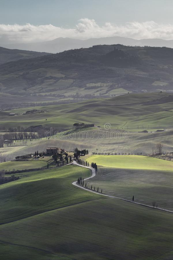 Green typical Tuscany landscape in Italian region stock images