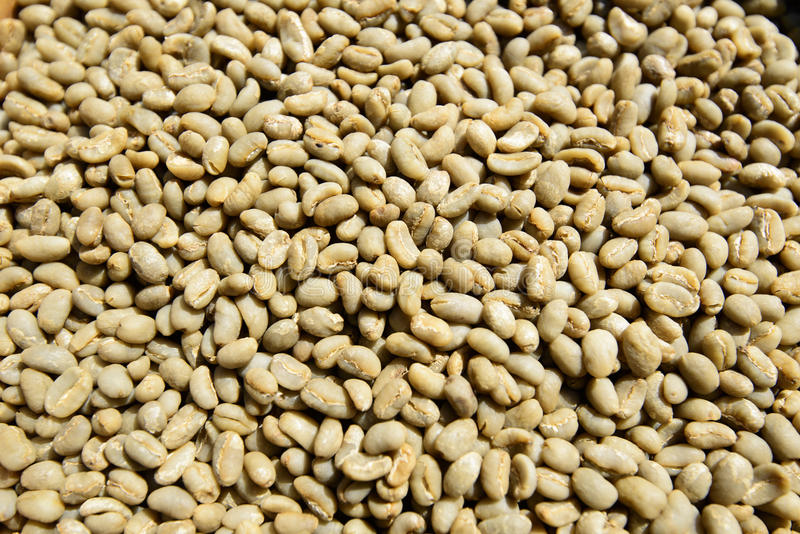 Download Green Unroasted Coffee Beans Stock Photo - Image of textured, yirga: 34147700