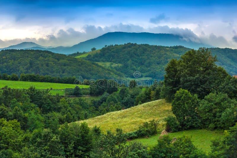 Green Valjevo, Serbia. royalty free stock photo