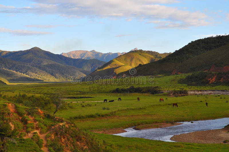 Green valley. Mountains behind green valley with river royalty free stock photos