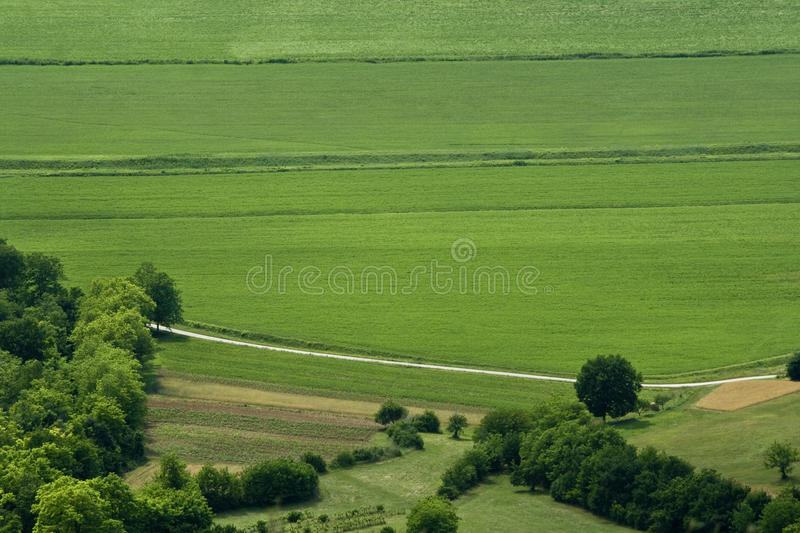 Green valley. Gentle green valley and the road in the Motovun area stock image