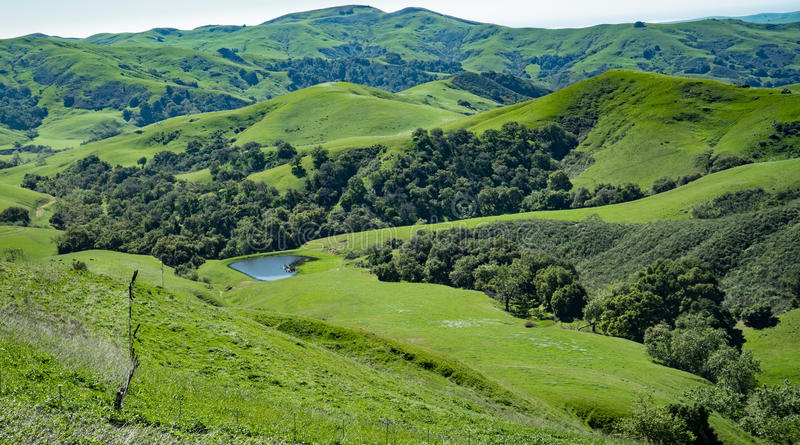 Green Valley, Cambria, California. Rolling hills and vally along Green Valley Road in Cambria, California royalty free stock photos