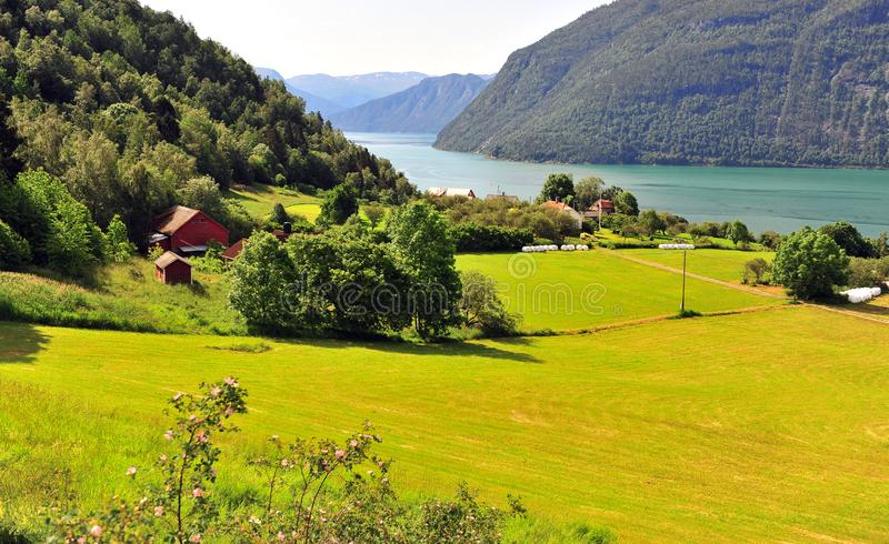Green valley with fjord at Ornes village. Norway royalty free stock images